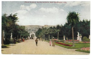 Palm Avenue, Sutro Heights, 1890s, Adolph Sutros gift to San Francisco. Postcard
