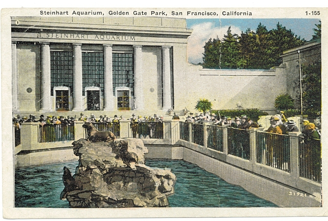 Steinhart Aquarium Seal Pool, circa 1900, #WSPostcard Collection