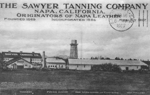 Sawyer Tanning Co. of Napa, California