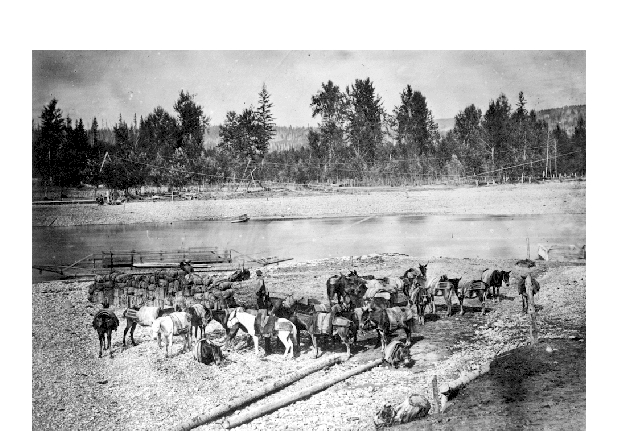 Packers at Quesnel Forks, BC