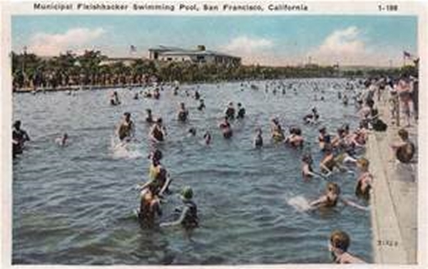 Fleishhacker Pool, Largest Salt Water Pool in the World, Vintage Postcard